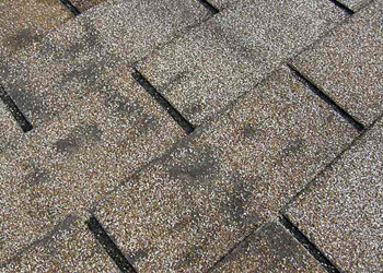 Dark Areas on Roof
